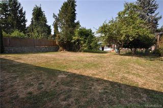 Photo 13: 3154 Stevenson Pl in VICTORIA: Vi Mayfair House for sale (Victoria)  : MLS®# 794161