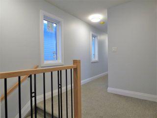 Photo 19: 8534 81 Avenue in Edmonton: Zone 17 House for sale : MLS®# E4135410