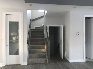 Photo 7:  in Edmonton: Zone 17 House for sale : MLS®# E4143384