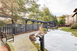 """Photo 11: 218 808 SANGSTER Place in New Westminster: The Heights NW Condo for sale in """"THE BROCKTON"""" : MLS®# R2349331"""
