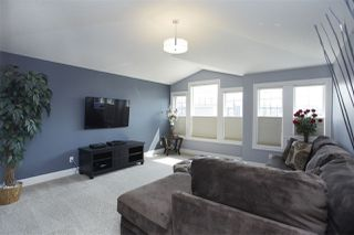Photo 15: 5080 SUNVIEW Drive: Sherwood Park House for sale : MLS®# E4150035