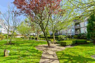 "Photo 9: 204 19131 FORD Road in Pitt Meadows: Central Meadows Condo for sale in ""WOODFORD MANOR"" : MLS®# R2359297"