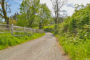 Photo 5: 29123 HUNTINGDON Road in Abbotsford: Aberdeen House for sale : MLS®# R2365435