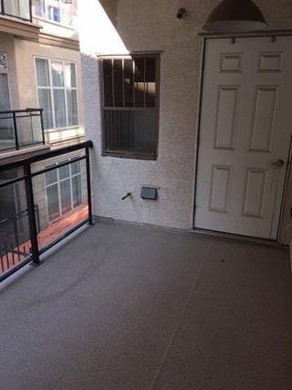 Photo 14: 210 4835 104A ST NW in Edmonton: Zone 15 Condo for sale : MLS®# E4174686