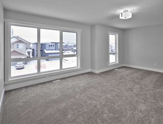 Photo 25: 20019 28 Avenue in Edmonton: Zone 57 House for sale : MLS®# E4182681