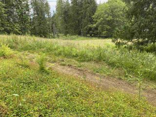 Photo 4: 5673 EXTROM Road in Chilliwack: Ryder Lake Land for sale (Sardis)  : MLS®# R2472600