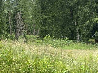 Photo 2: 5673 EXTROM Road in Chilliwack: Ryder Lake Land for sale (Sardis)  : MLS®# R2472600