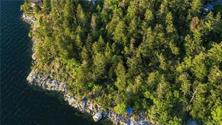 Photo 15: 8100 McPhail Rd in Central Saanich: CS Inlet Land for sale : MLS®# 838233