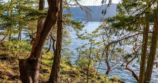 Photo 7: 8100 McPhail Rd in Central Saanich: CS Inlet Land for sale : MLS®# 838233