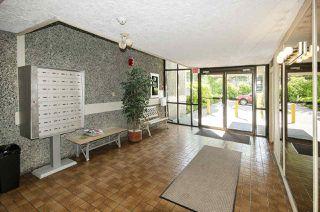 """Photo 24: 205 13525 96 Avenue in Surrey: Queen Mary Park Surrey Condo for sale in """"ARBUTUS"""" : MLS®# R2479457"""