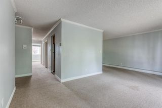 Photo 12: 309 315 HERITAGE Drive SE in Calgary: Acadia Apartment for sale : MLS®# A1029612