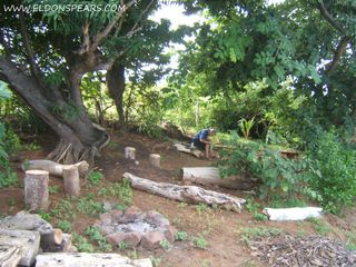 Photo 3: Oceanfront land for sale in Las Tablas