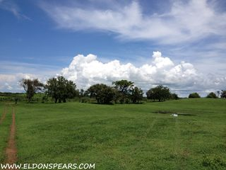 Photo 5: Oceanfront land for sale in Las Tablas