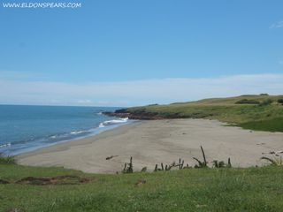 Photo 1: Oceanfront land for sale in Las Tablas