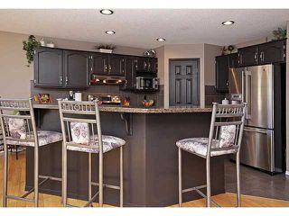 Photo 10: 13042 DOUGLAS RIDGE Grove SE in Calgary: Douglas Rdg_Dglsdale Residential Detached Single Family for sale : MLS®# C3653253