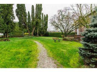 "Photo 17: 305 2279 MCCALLUM Road in Abbotsford: Central Abbotsford Condo for sale in ""ALAMEDA COURT"" : MLS®# F1433708"