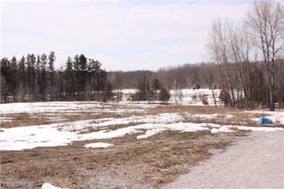 Photo 12: 3816 Burnside Line in Severn: Rural Severn House (Bungalow-Raised) for sale : MLS®# X3158630