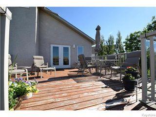 Photo 16: 50 Marseilles Close in Winnipeg: West Kildonan / Garden City Residential for sale (North West Winnipeg)  : MLS®# 1616686