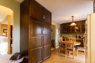 Photo 3: 11981 210 Street in Maple Ridge: Southwest Maple Ridge House for sale : MLS®# R2089588