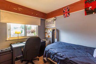Photo 12: 11981 210 Street in Maple Ridge: Southwest Maple Ridge House for sale : MLS®# R2089588