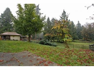 Photo 17: 25032 28TH Ave in Langley: Home for sale : MLS®# F1324478