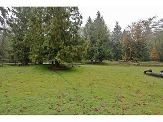 Photo 18: 25032 28TH Ave in Langley: Home for sale : MLS®# F1324478