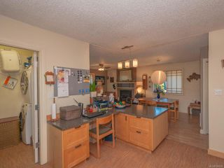 Photo 26: 729 ELAND DRIVE in CAMPBELL RIVER: CR Campbell River Central House for sale (Campbell River)  : MLS®# 766639