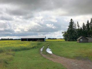 Photo 2: 51072 Range Road 243: Rural Leduc County Rural Land/Vacant Lot for sale : MLS®# E4077700