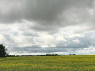 Photo 7: 51072 Range Road 243: Rural Leduc County Rural Land/Vacant Lot for sale : MLS®# E4077700