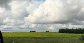 Photo 8: 51072 Range Road 243: Rural Leduc County Rural Land/Vacant Lot for sale : MLS®# E4077700