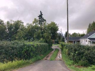 Photo 6: 51072 Range Road 243: Rural Leduc County Rural Land/Vacant Lot for sale : MLS®# E4077700