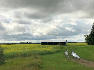 Photo 5: 51072 Range Road 243: Rural Leduc County Rural Land/Vacant Lot for sale : MLS®# E4077700