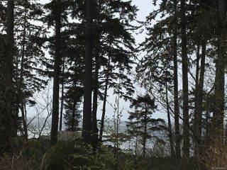 Photo 7: LT 1 Marine Dr in UCLUELET: PA Ucluelet Mixed Use for sale (Port Alberni)  : MLS®# 784342