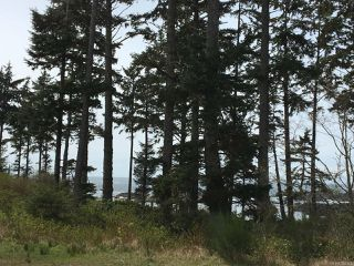 Photo 8: LT 1 Marine Dr in UCLUELET: PA Ucluelet Mixed Use for sale (Port Alberni)  : MLS®# 784342