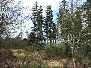 Photo 10: LT 1 Marine Dr in UCLUELET: PA Ucluelet Mixed Use for sale (Port Alberni)  : MLS®# 784342