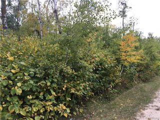 Photo 2: 9 Whitetail Drive in Lake Manitoba Narrows: RM of West Interlake Residential for sale (R19)  : MLS®# 1725495
