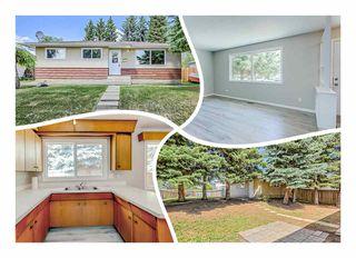 Main Photo: 6228 152A Avenue in Edmonton: Zone 02 House for sale : MLS®# E4133691