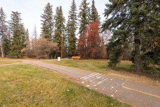 Photo 30: 10048 147 Street in Edmonton: Zone 10 House for sale : MLS®# E4134895