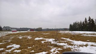 Photo 8: 22 51209 RGE RD 255 Road: Rural Parkland County Rural Land/Vacant Lot for sale : MLS®# E4136386