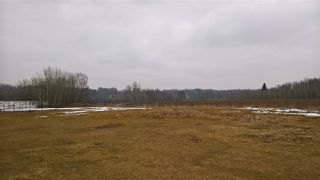 Photo 13: 22 51209 RGE RD 255 Road: Rural Parkland County Rural Land/Vacant Lot for sale : MLS®# E4136386