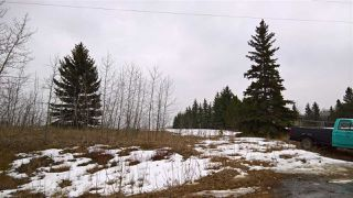 Photo 7: 22 51209 RGE RD 255 Road: Rural Parkland County Rural Land/Vacant Lot for sale : MLS®# E4136386