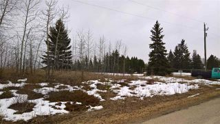 Photo 14: 22 51209 RGE RD 255 Road: Rural Parkland County Rural Land/Vacant Lot for sale : MLS®# E4136386