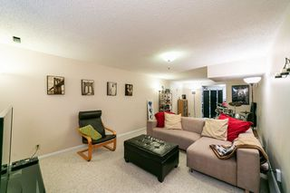 Photo 25: 14 Gladstone Crescent: St. Albert House for sale : MLS®# E4149524