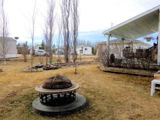 Photo 19: 6620, 54500 Range Road 275: Rural Sturgeon County Mobile for sale : MLS®# E4152358