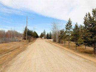 Photo 26: 6620, 54500 Range Road 275: Rural Sturgeon County Mobile for sale : MLS®# E4152358