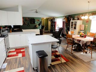 Photo 7: 6620, 54500 Range Road 275: Rural Sturgeon County Mobile for sale : MLS®# E4152358