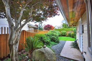 Photo 15: 10311 St. Johns Place in Richmond: Steveston North Home for sale ()  : MLS®# V794748