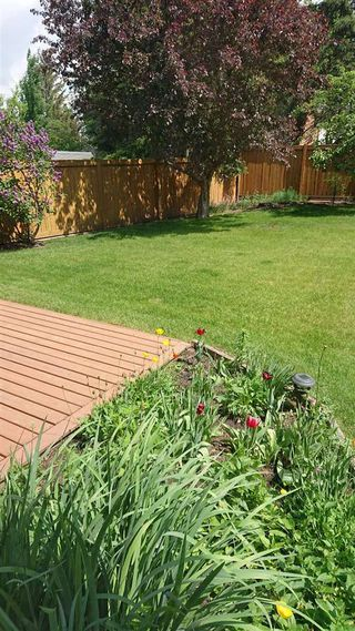 Photo 5: 2815 125 Street in Edmonton: Zone 16 House for sale : MLS®# E4161938