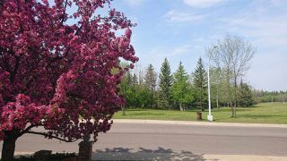 Photo 2: 2815 125 Street in Edmonton: Zone 16 House for sale : MLS®# E4161938