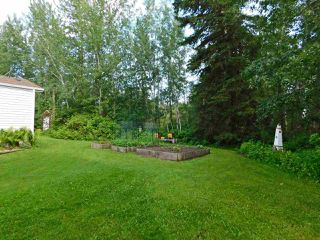 Photo 22: 22124 Twp Rd 570: Rural Sturgeon County House for sale : MLS®# E4164551